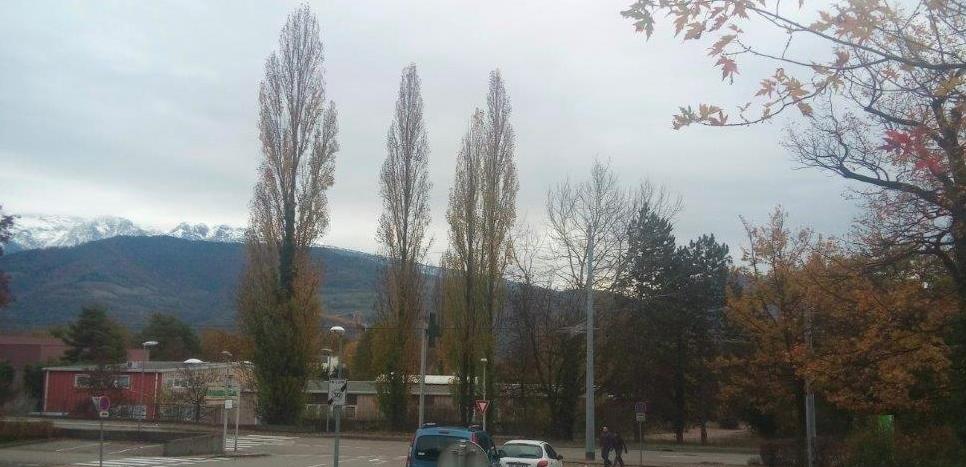 Programme Malacher Nord. Vous avez actuellement des arbres et les montagnes comme horizon. Vous aurez bientôt des immeubles de la même hauteur que les arbres !